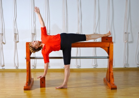 Ramamani Iyengar Memorial Yoga Institute Bobby Clennell